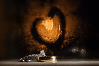 A picture of Annie and Chris's rings at their wedding in Katy, Texas at Agave Real